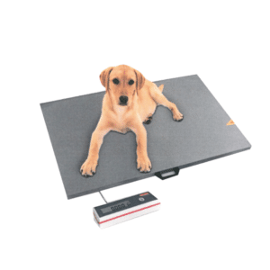 Veterinary weighing scale with 250 kg capacity
