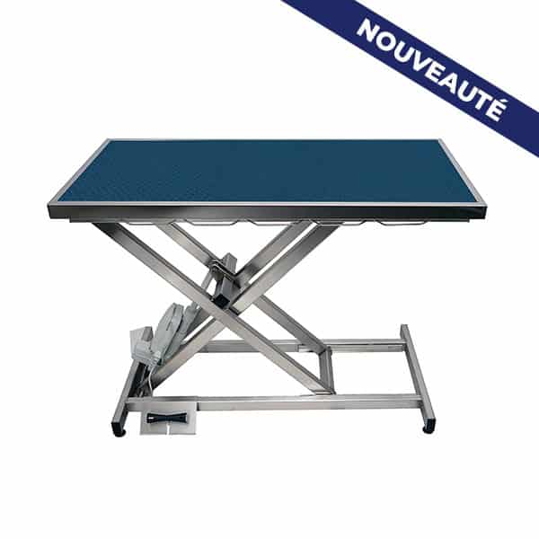 ELITE electric consultation table with carpet and frame