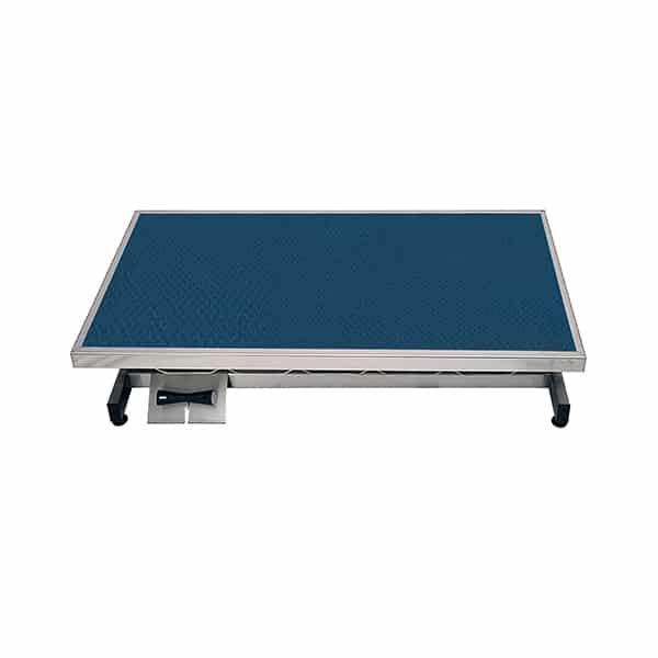 TA400010 Table consultation électrique ELITE tapis et cadre N2