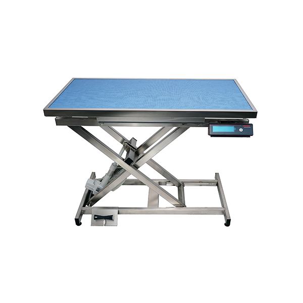 TA400110 ELITE electric consultation table, carpet and frame with weighing N1